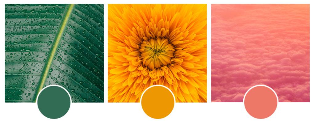 couleurs-tendances